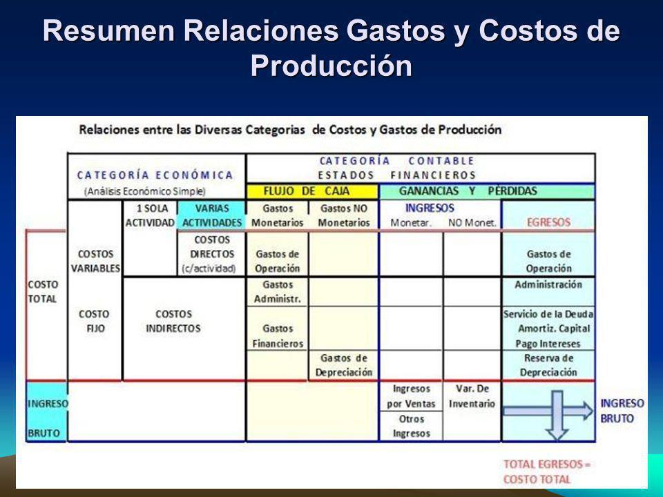 Resumen Relaciones Gastos y Costos de Producción