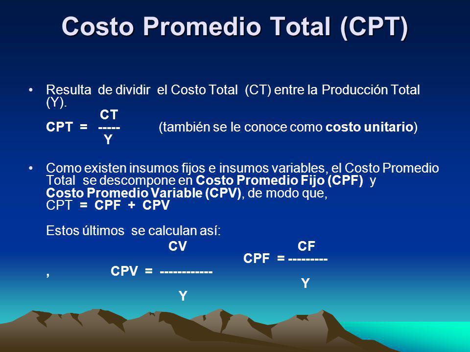 Costo Promedio Total (CPT)