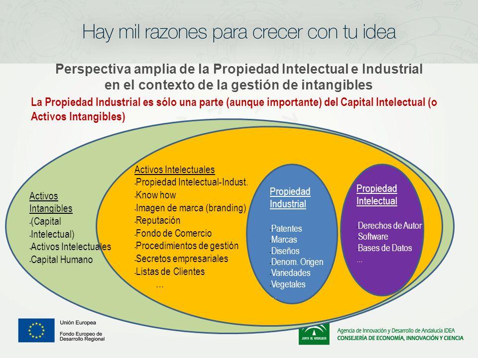 Perspectiva amplia de la Propiedad Intelectual e Industrial