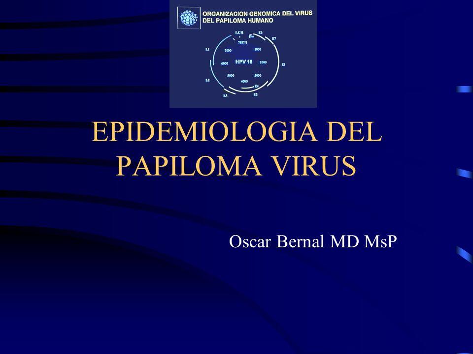 EPIDEMIOLOGIA DEL PAPILOMA VIRUS