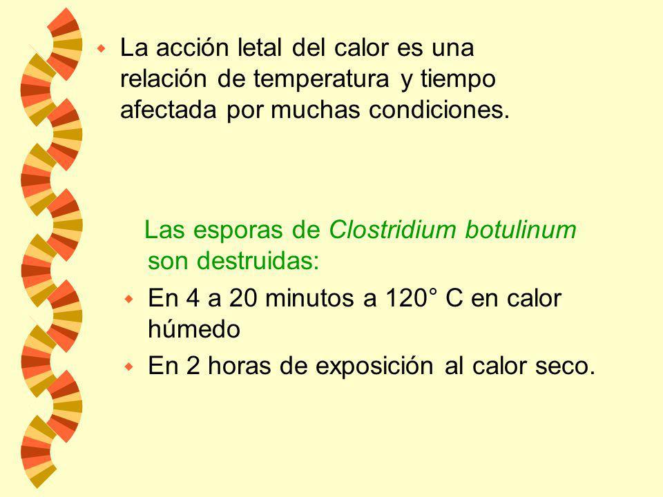 La acción letal del calor es una relación de temperatura y tiempo afectada por muchas condiciones.