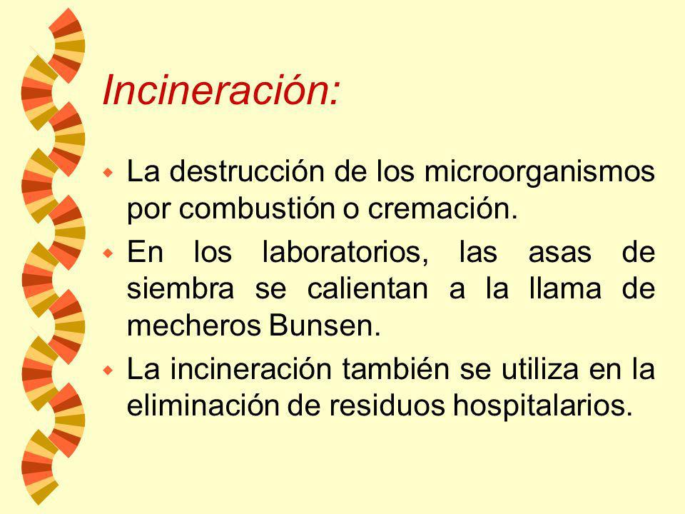 Incineración: La destrucción de los microorganismos por combustión o cremación.