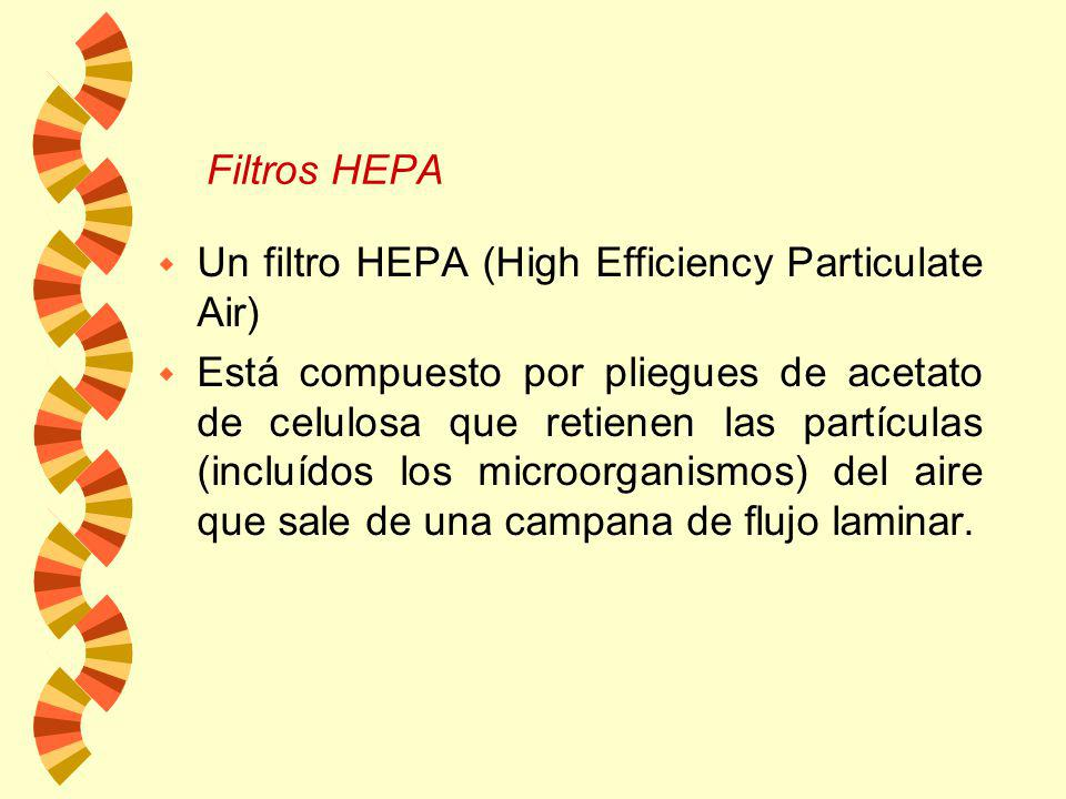 Filtros HEPA Un filtro HEPA (High Efficiency Particulate Air)