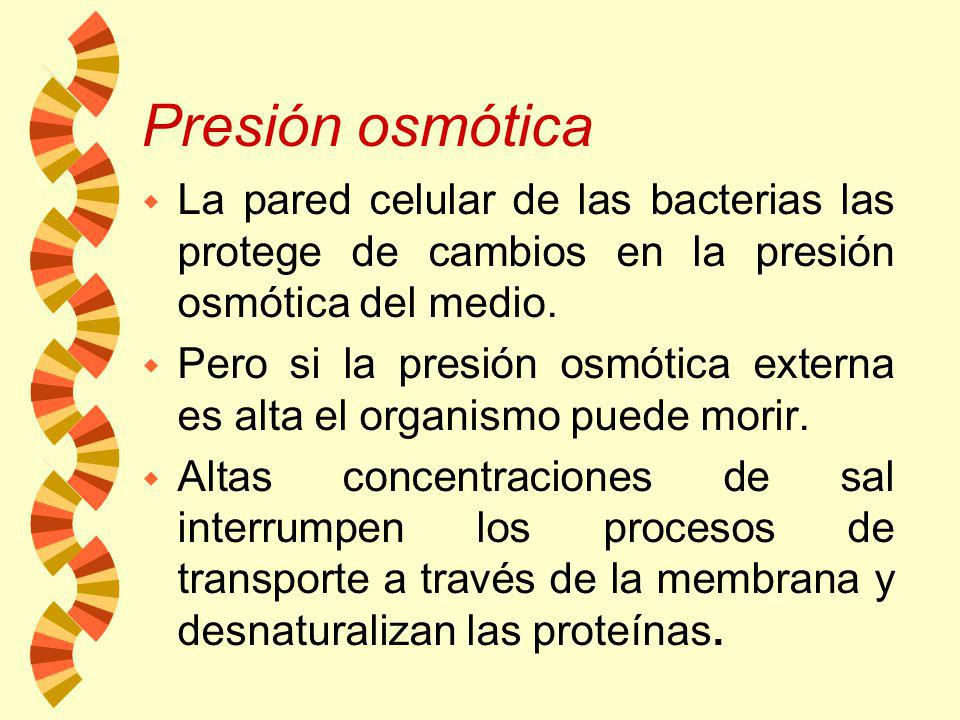 Presión osmótica La pared celular de las bacterias las protege de cambios en la presión osmótica del medio.