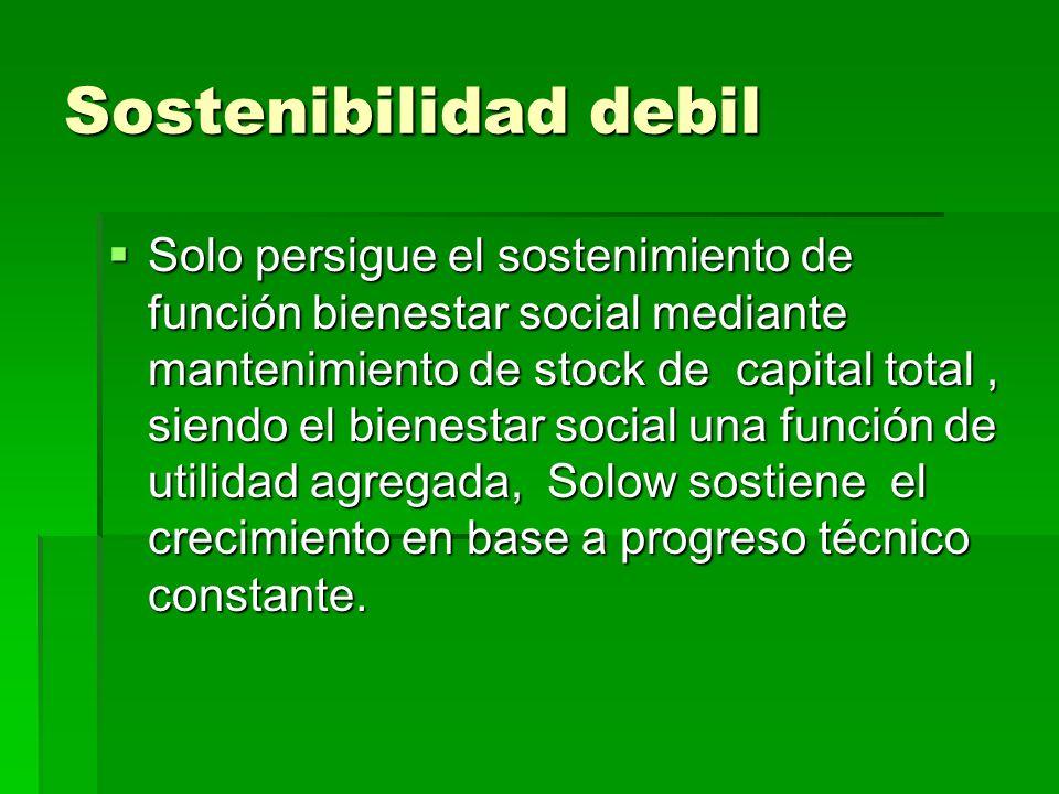 Sostenibilidad debil