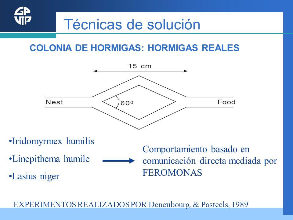 Técnicas de solución Iridomyrmex humilis Linepithema humile