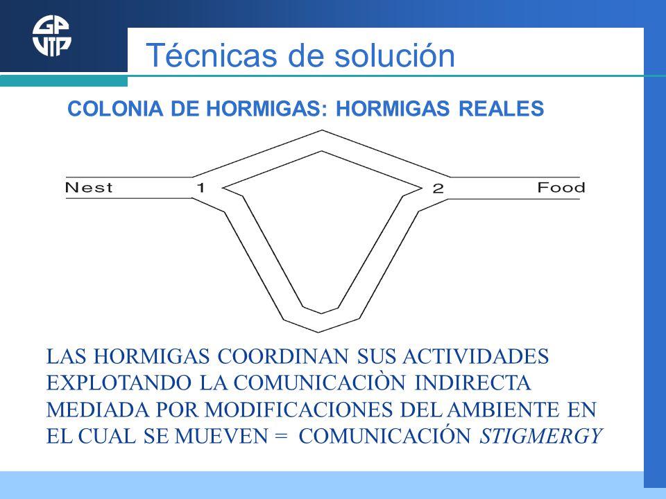 Técnicas de solución COLONIA DE HORMIGAS: HORMIGAS REALES.