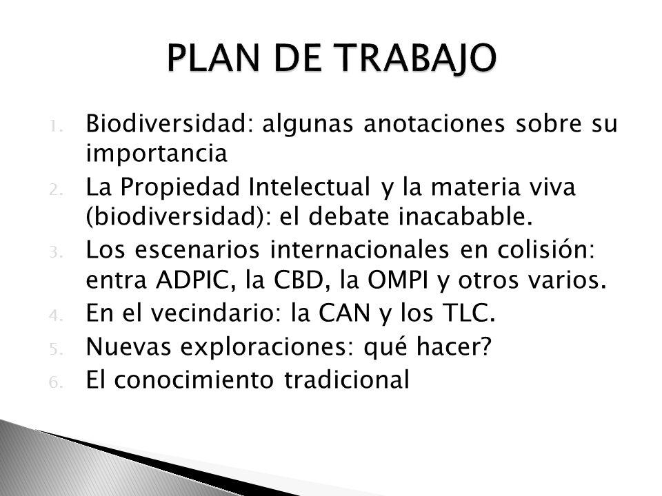 PLAN DE TRABAJO Biodiversidad: algunas anotaciones sobre su importancia.
