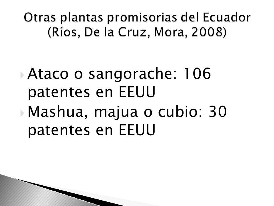 Otras plantas promisorias del Ecuador (Ríos, De la Cruz, Mora, 2008)