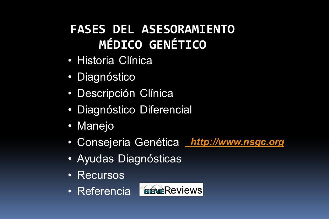 FASES DEL ASESORAMIENTO MÉDICO GENÉTICO