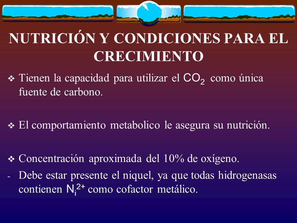 NUTRICIÓN Y CONDICIONES PARA EL CRECIMIENTO