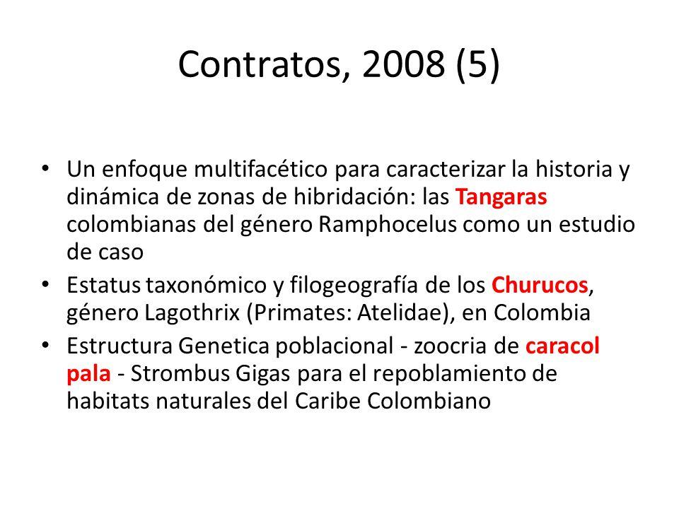 Contratos, 2008 (5)