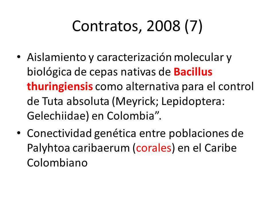 Contratos, 2008 (7)