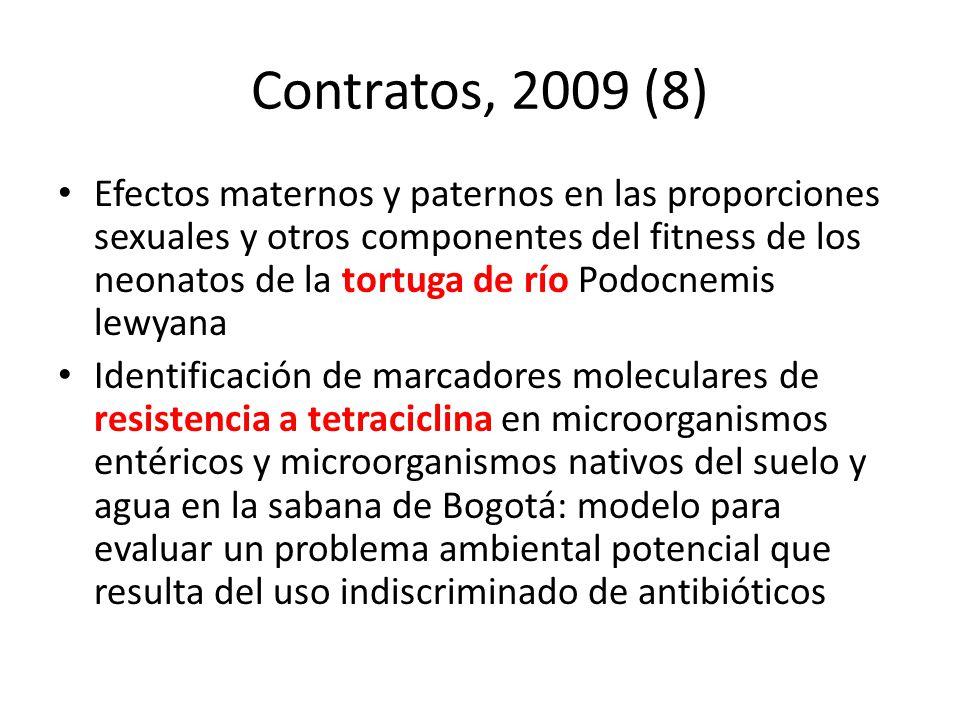 Contratos, 2009 (8)