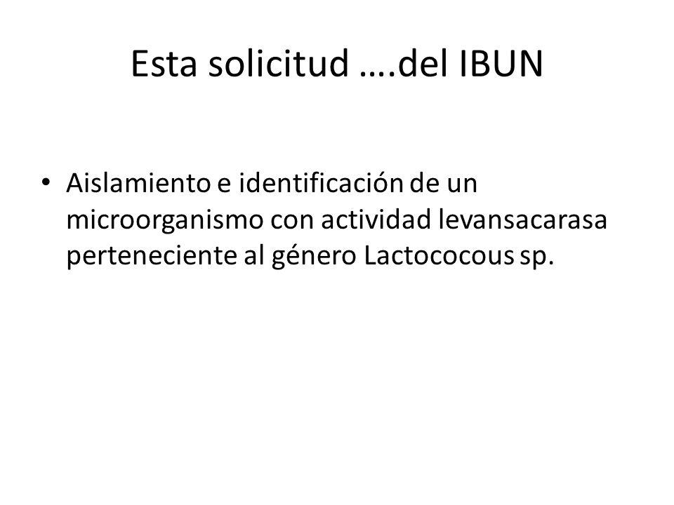 Esta solicitud ….del IBUN