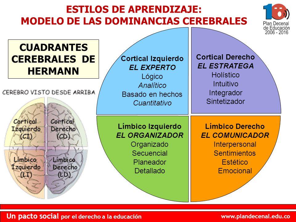 ESTILOS DE APRENDIZAJE: MODELO DE LAS DOMINANCIAS CEREBRALES