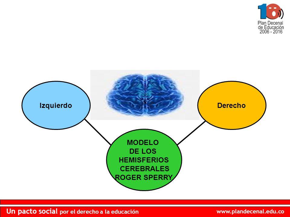 Izquierdo Derecho MODELO DE LOS HEMISFERIOS CEREBRALES ROGER SPERRY