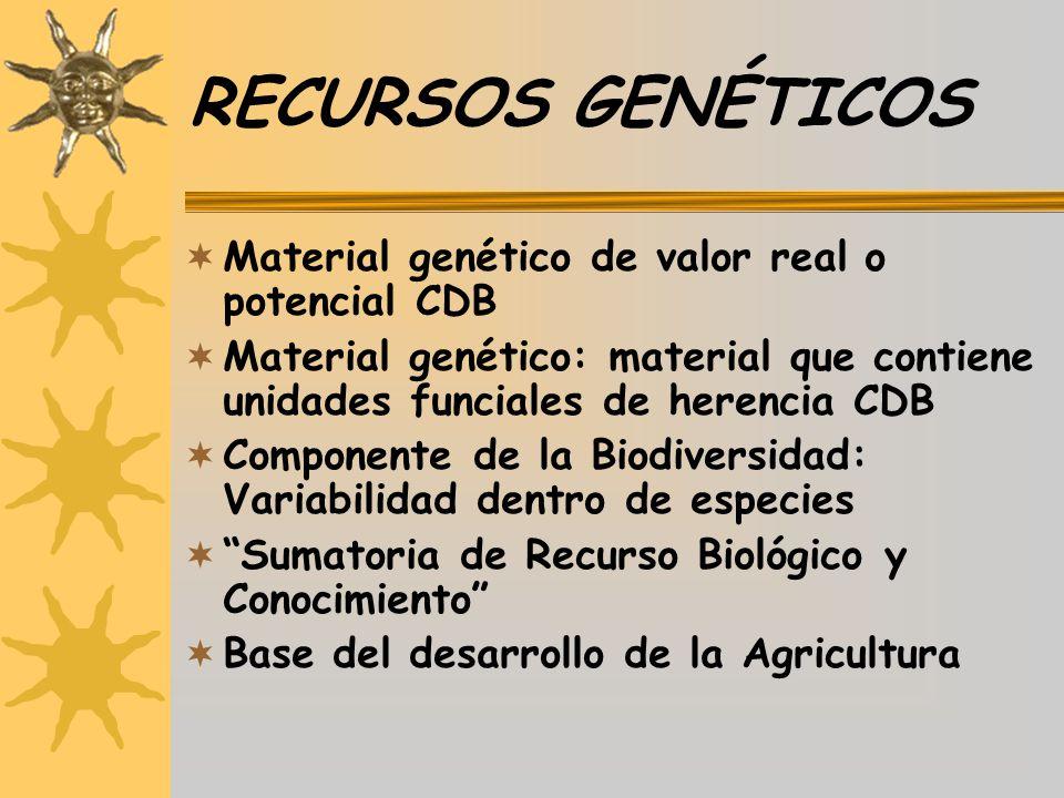 RECURSOS GENÉTICOS Material genético de valor real o potencial CDB