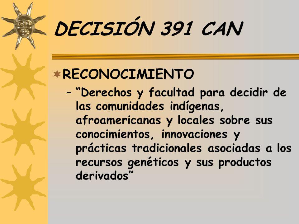 DECISIÓN 391 CAN RECONOCIMIENTO