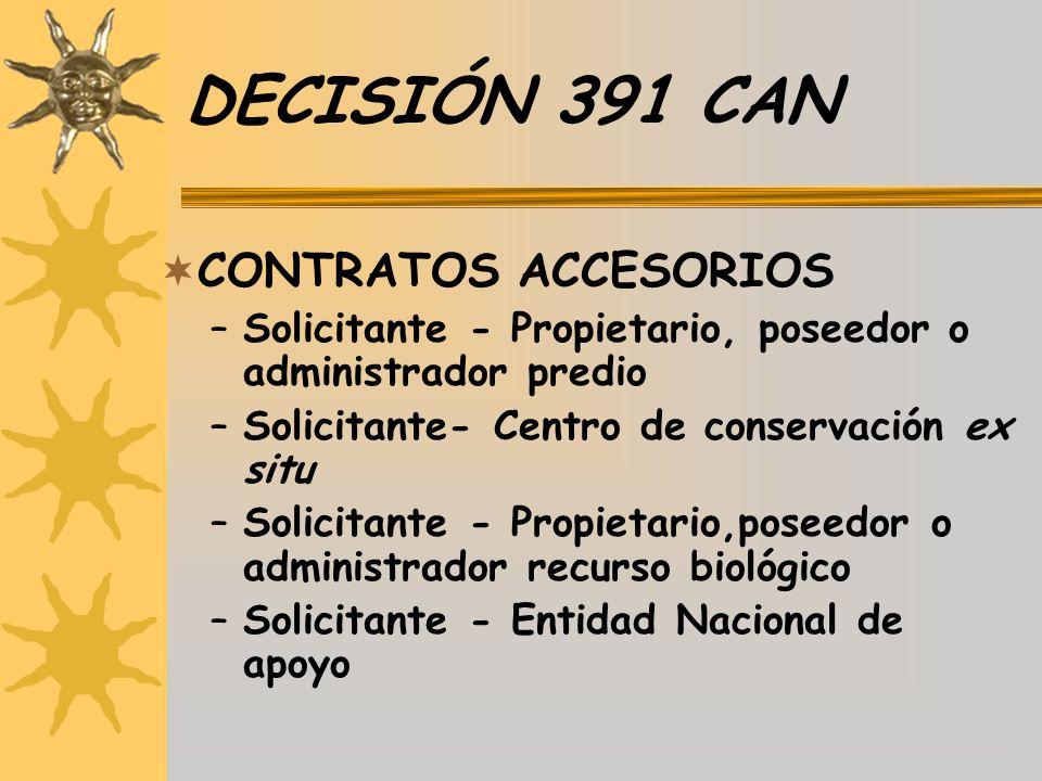 DECISIÓN 391 CAN CONTRATOS ACCESORIOS