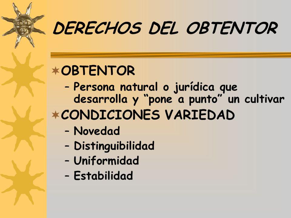 DERECHOS DEL OBTENTOR OBTENTOR CONDICIONES VARIEDAD