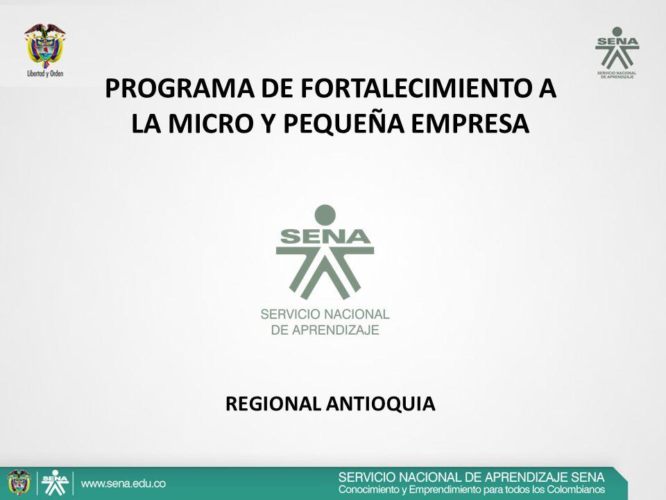 PROGRAMA DE FORTALECIMIENTO A LA MICRO Y PEQUEÑA EMPRESA