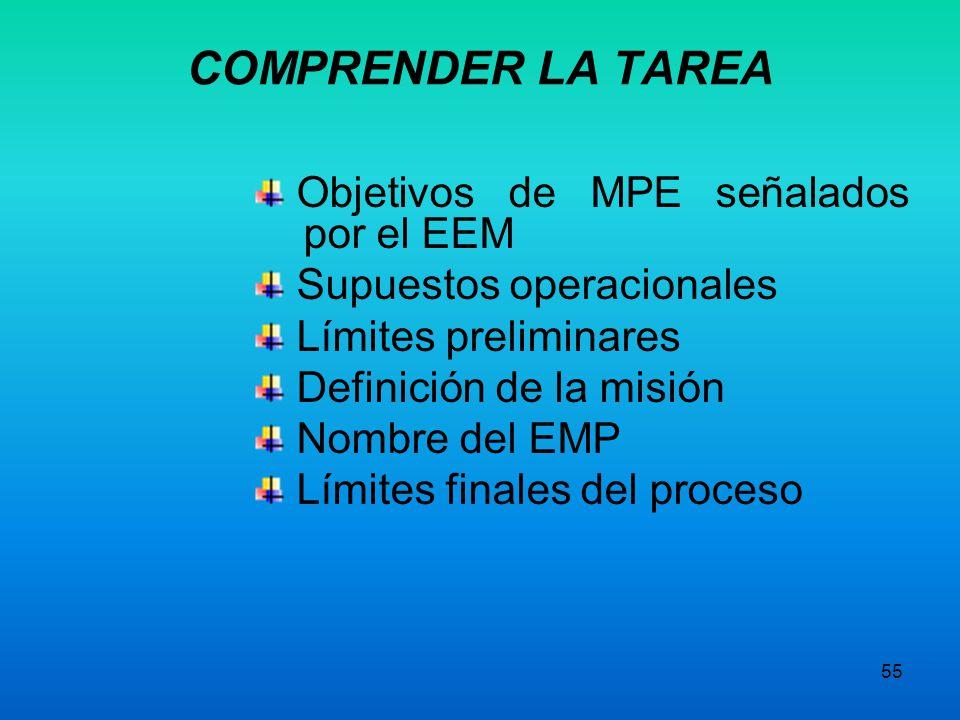 COMPRENDER LA TAREA Objetivos de MPE señalados por el EEM