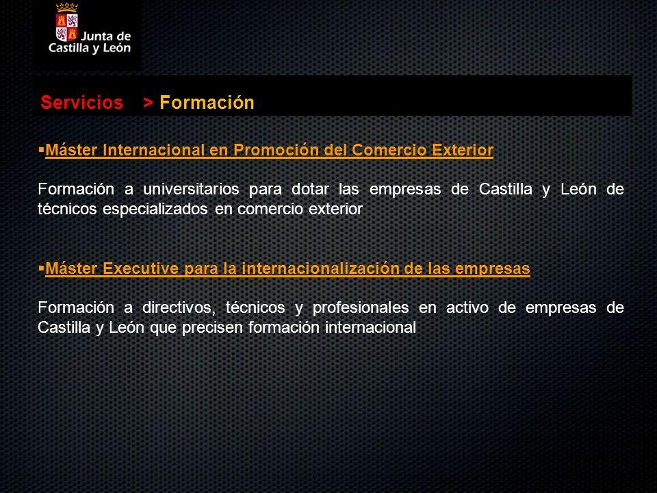 Servicios > Formación