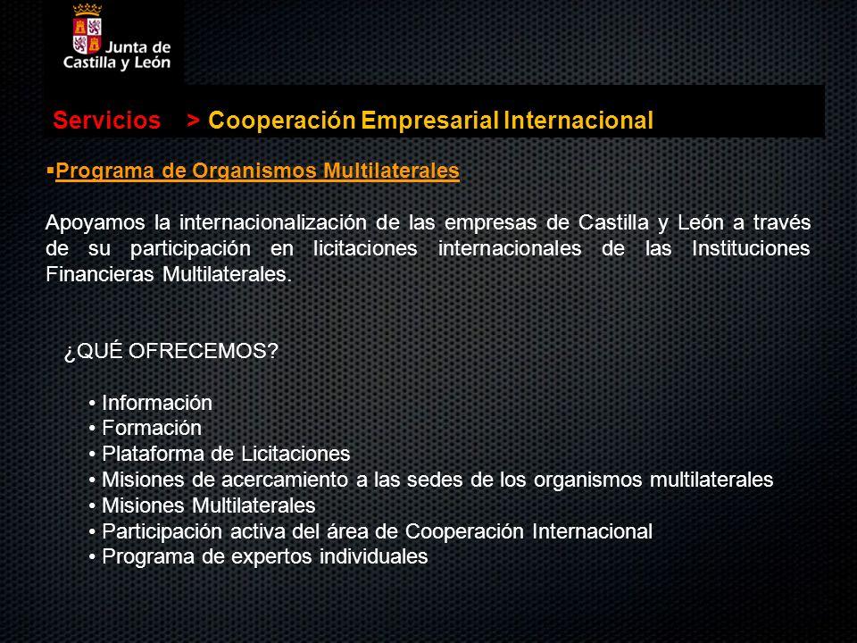 Cooperación Empresarial Internacional