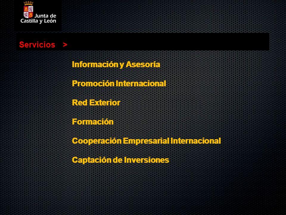 Servicios> Servicios. > Información y Asesoría. Promoción Internacional. Red Exterior. Formación.