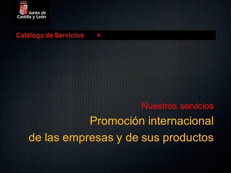 Promoción internacional de las empresas y de sus productos