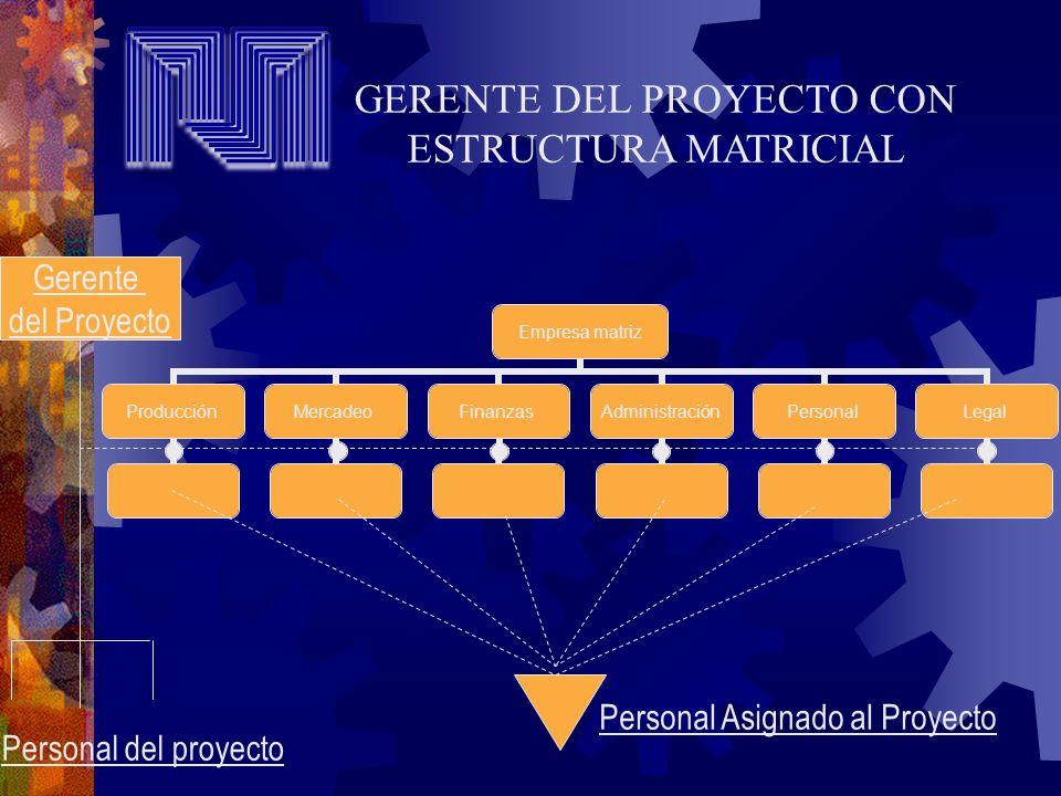 GERENTE DEL PROYECTO CON ESTRUCTURA MATRICIAL