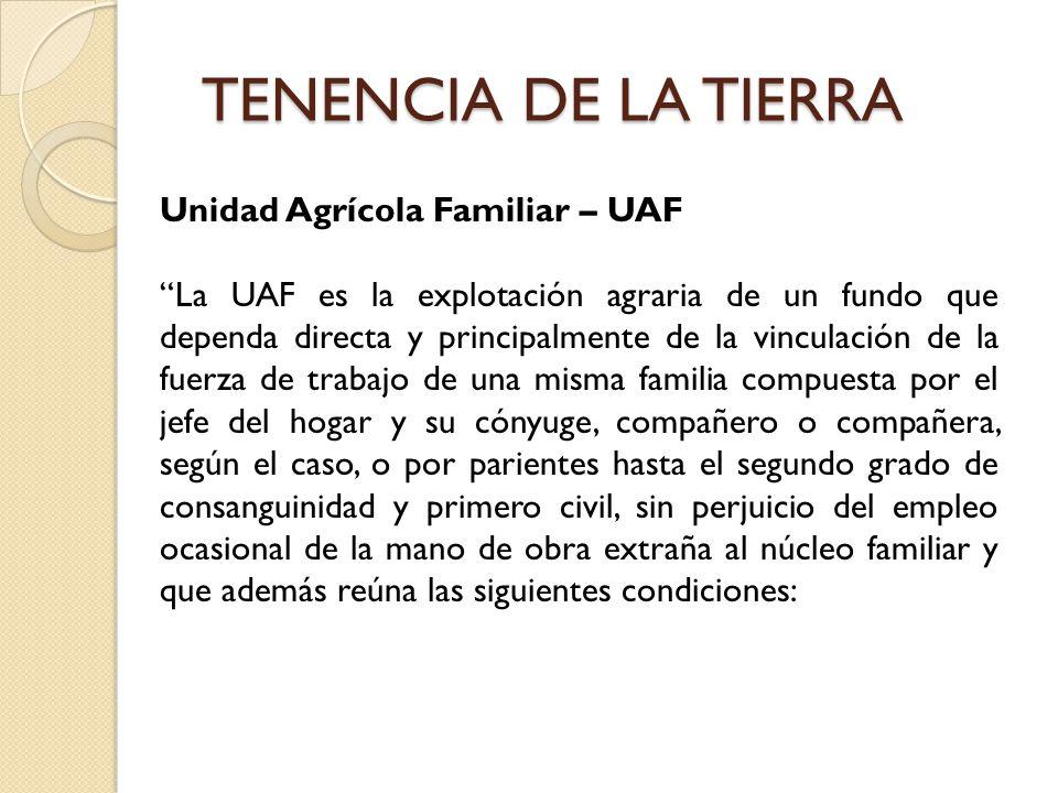 TENENCIA DE LA TIERRA Unidad Agrícola Familiar – UAF