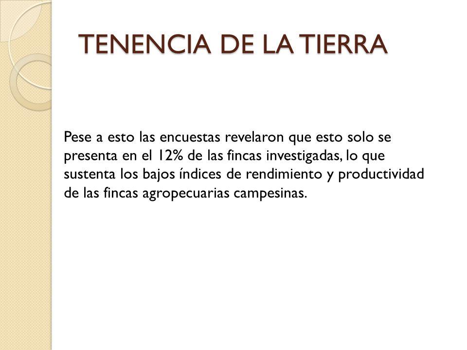 TENENCIA DE LA TIERRA