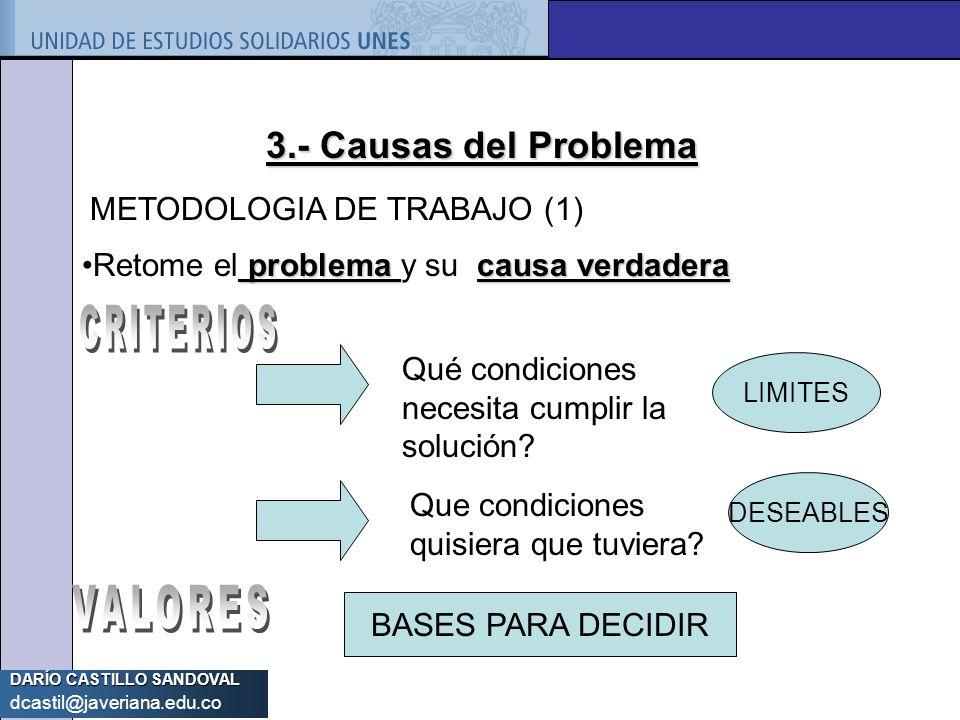 3.- Causas del Problema METODOLOGIA DE TRABAJO (1)
