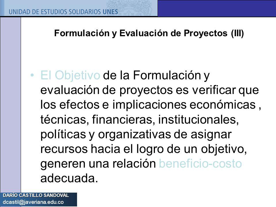Formulación y Evaluación de Proyectos (III)