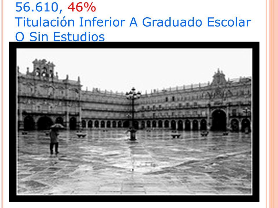 56.610, 46% Titulación Inferior A Graduado Escolar O Sin Estudios