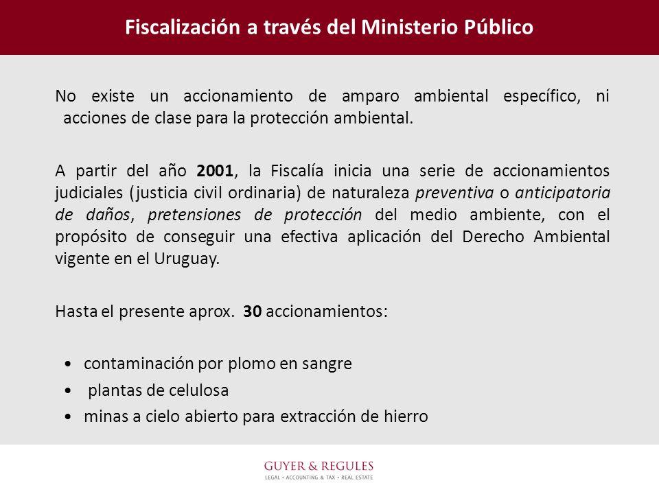 Fiscalización a través del Ministerio Público