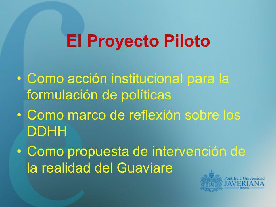 El Proyecto Piloto Como acción institucional para la formulación de políticas. Como marco de reflexión sobre los DDHH.