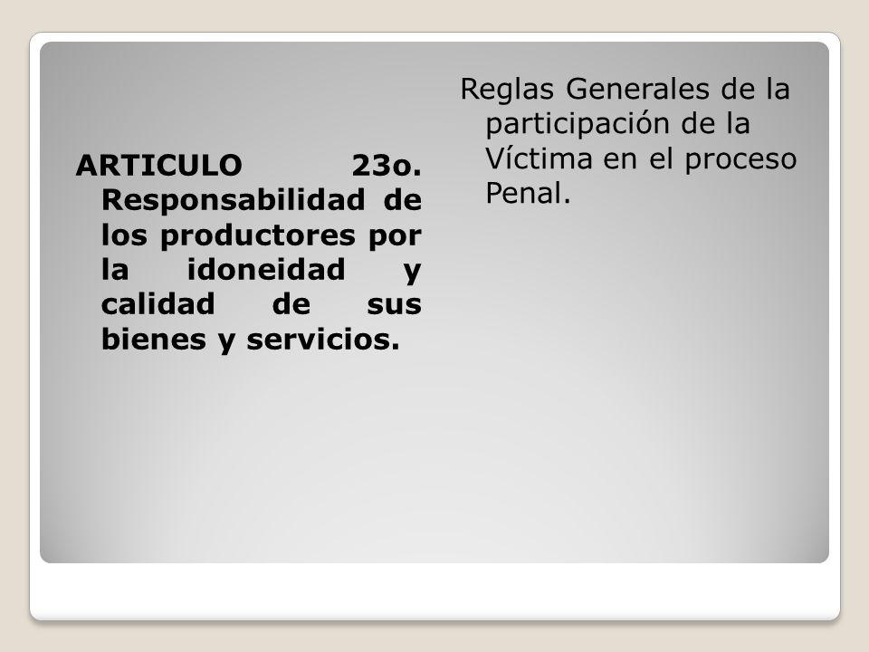 Reglas Generales de la participación de la Víctima en el proceso Penal.