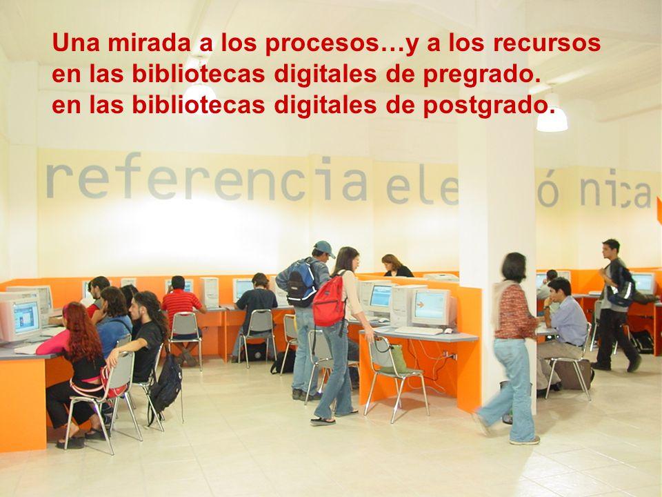 Una mirada a los procesos…y a los recursos en las bibliotecas digitales de pregrado.