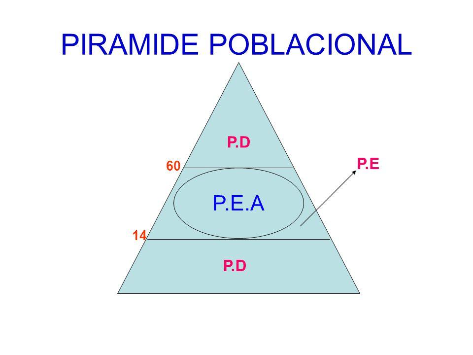 PIRAMIDE POBLACIONAL P.D P.E 60 P.E.A 14 P.D