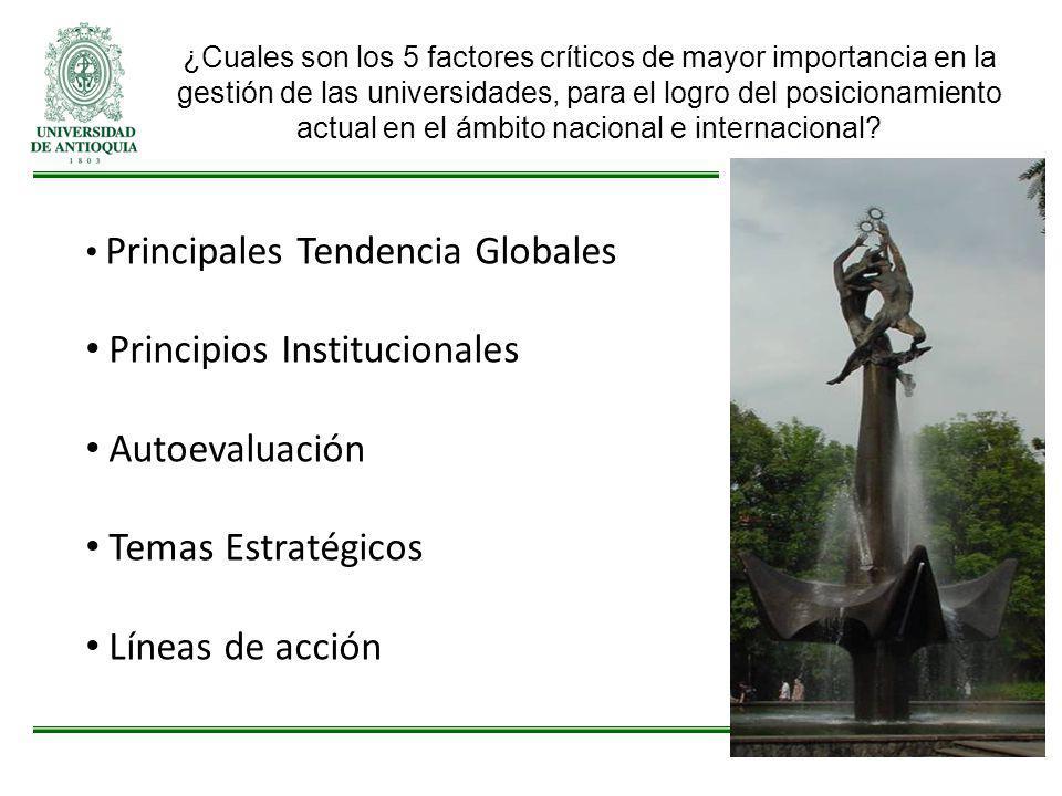 Principios Institucionales Autoevaluación Temas Estratégicos