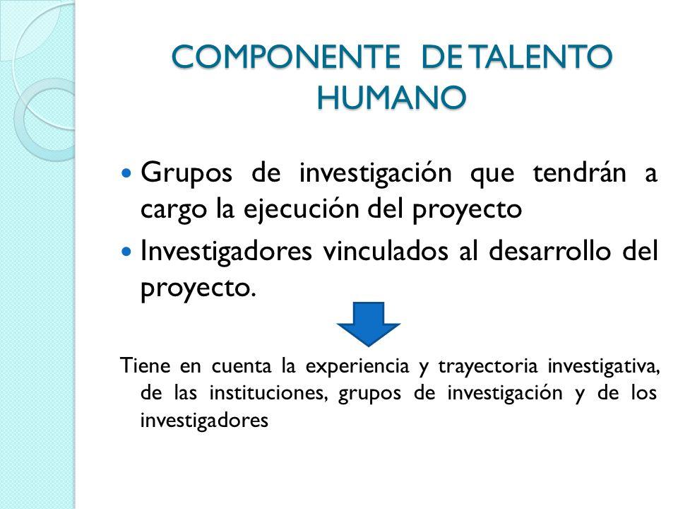 COMPONENTE DE TALENTO HUMANO