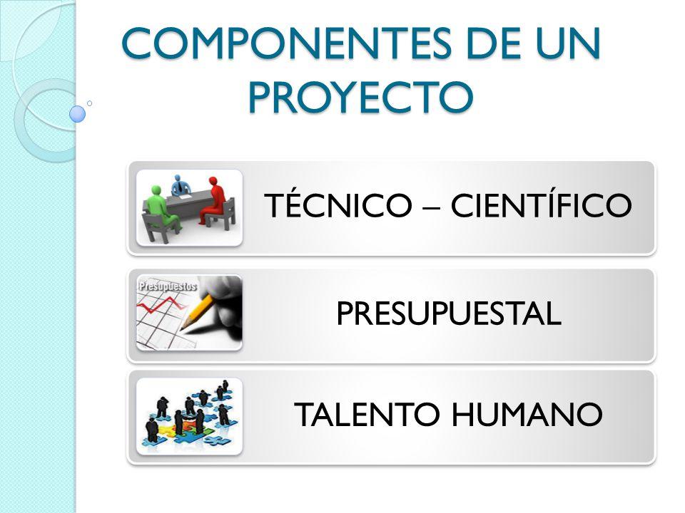 COMPONENTES DE UN PROYECTO