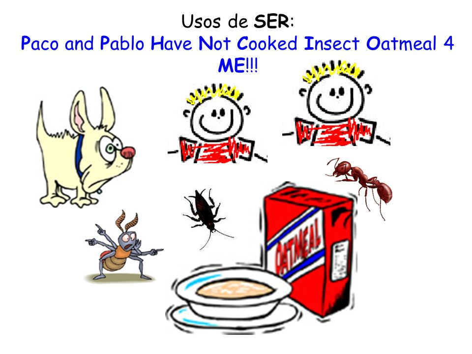 Paco and Pablo Have Not Cooked Insect Oatmeal 4 ME!!!