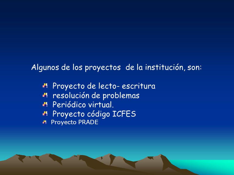 Algunos de los proyectos de la institución, son: