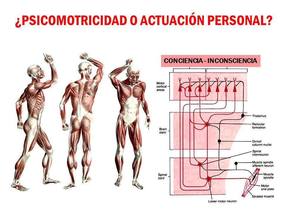¿PSICOMOTRICIDAD O ACTUACIÓN PERSONAL