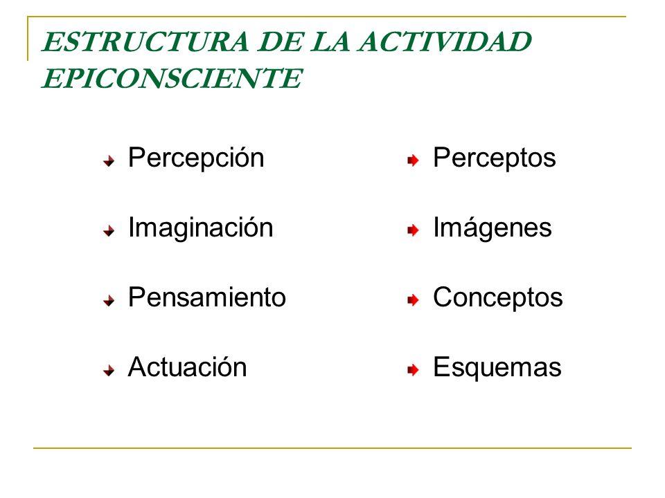 ESTRUCTURA DE LA ACTIVIDAD EPICONSCIENTE