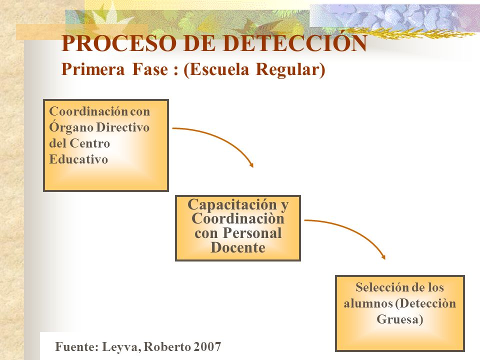 PROCESO DE DETECCIÓN Primera Fase : (Escuela Regular)